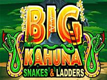 Онлайн слот Биг Кахуна – Змеи И Лестницы