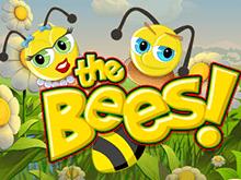 Игровой автомат Пчелы