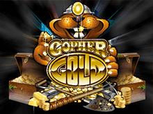 Азартная игра Gopher Gold